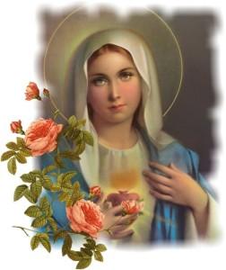 Maria e rose